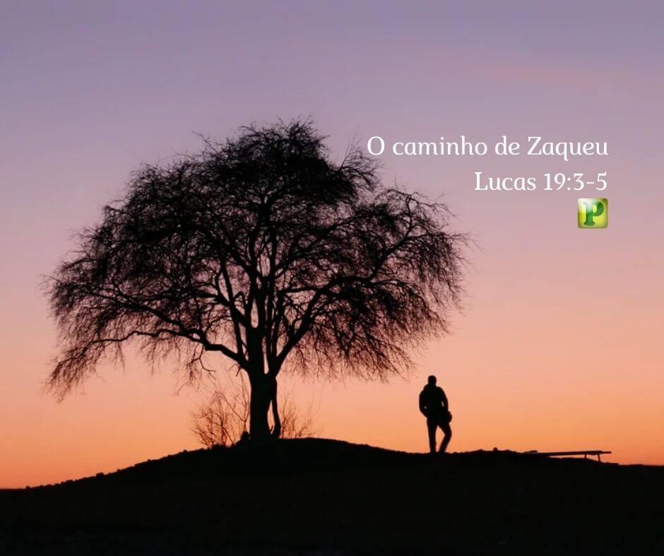 O caminho de Zaqueu – Lucas 19:3-5
