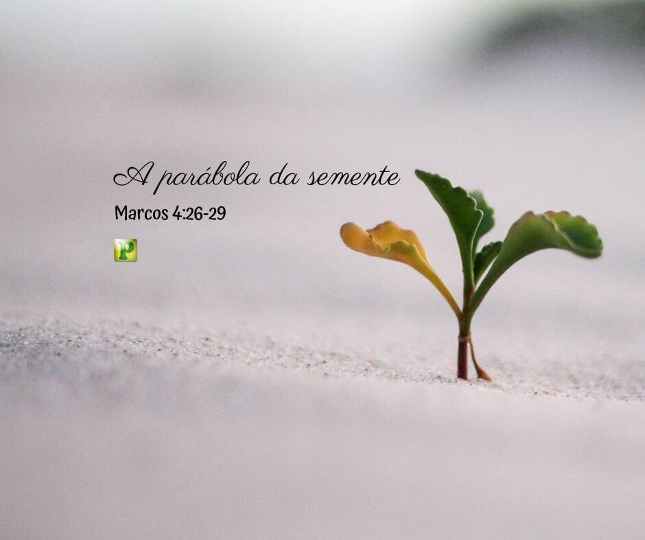 A parábola da semente – Marcos 4:26-29