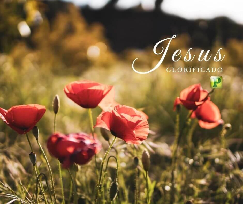 Jesus Glorificado – Apocalipse 1:10-19