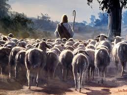 Ilustrações Bíblicas – Voz do Pastor Ovelha