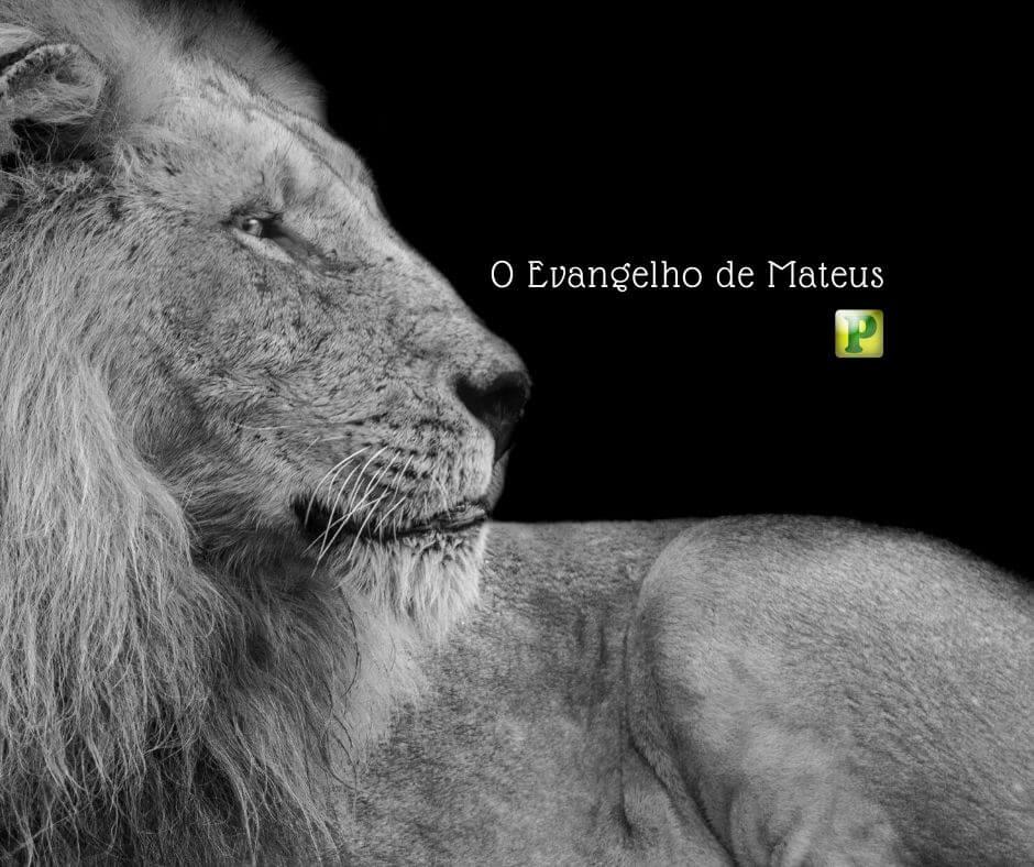 O Evangelho de Mateus  –  O Rei dos Judeus