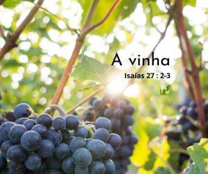 A Vinha – Isaías 27:2-3