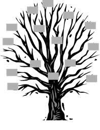 genealogiadejesus