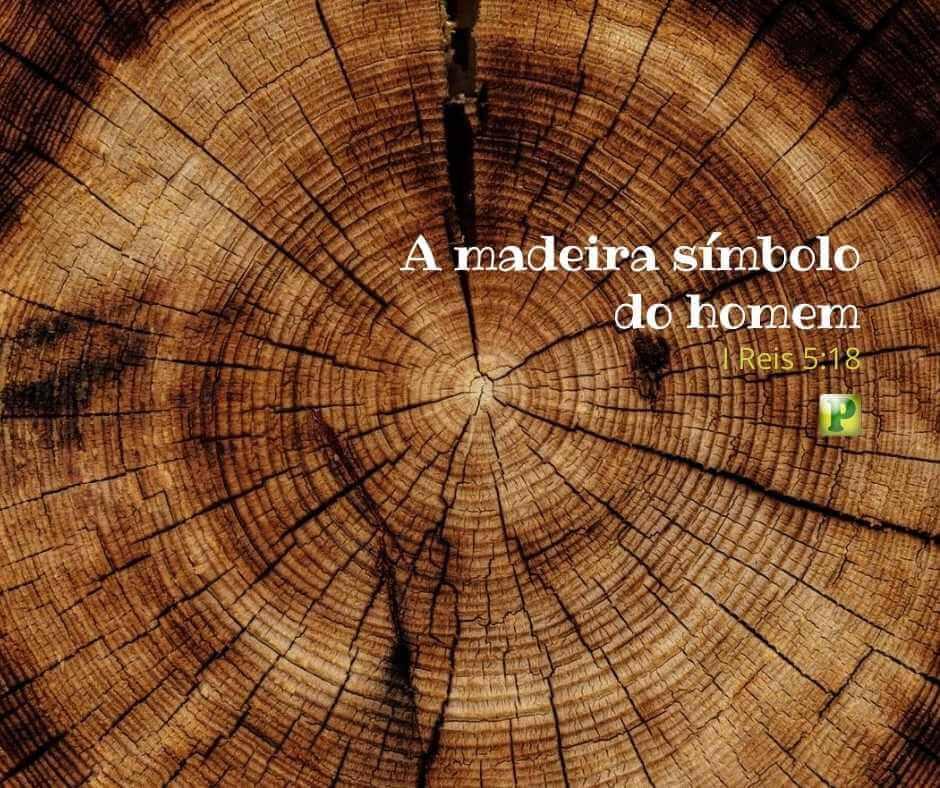 A madeira símbolo do homem  – I Reis 5:18
