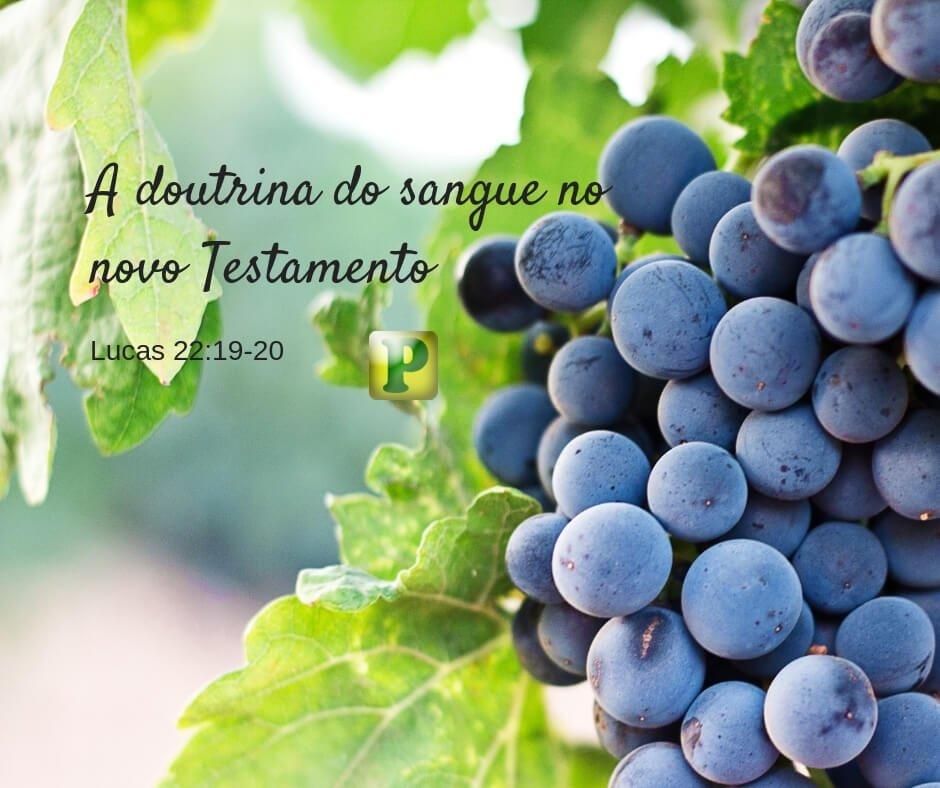 Estudos Bíblicos – A Doutrina do Sangue no Novo Testamento