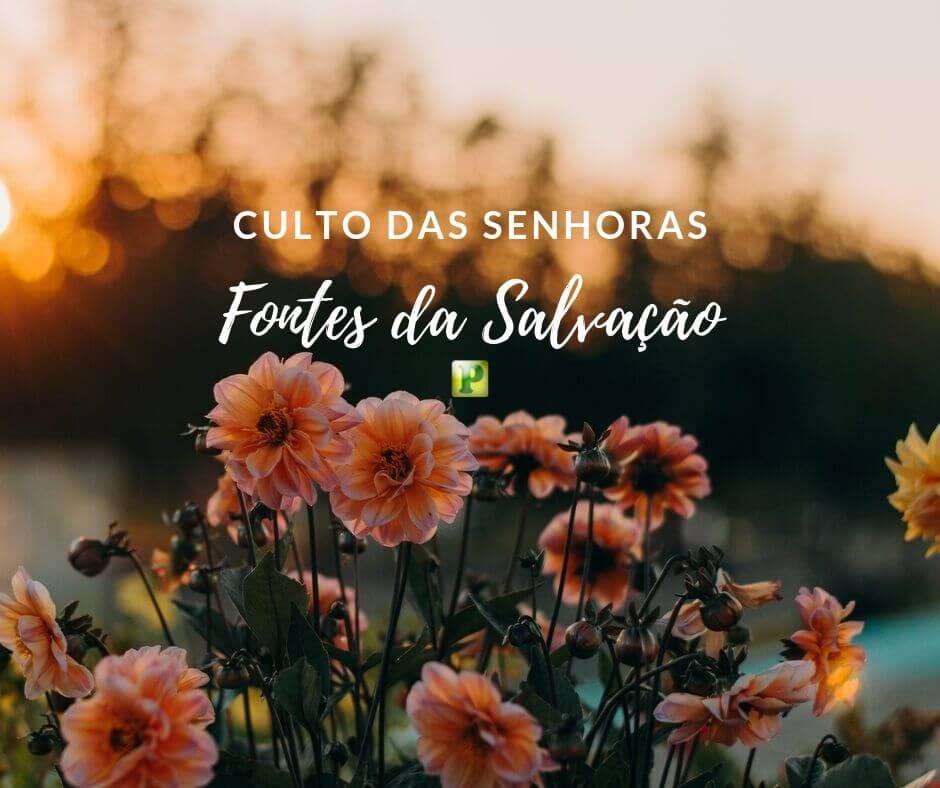 As fontes da Salvação – Culto das Senhoras