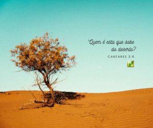 Quem é esta que sobe do deserto?  – Cantares 3:6
