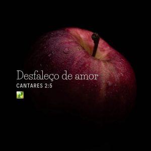 Cantares 2:5 – Desfaleço de amor