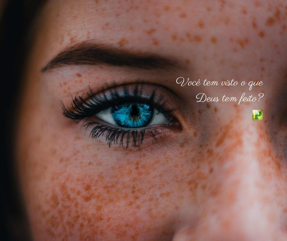 Você tem visto o que Deus tem feito? – Salmos 116:12-13