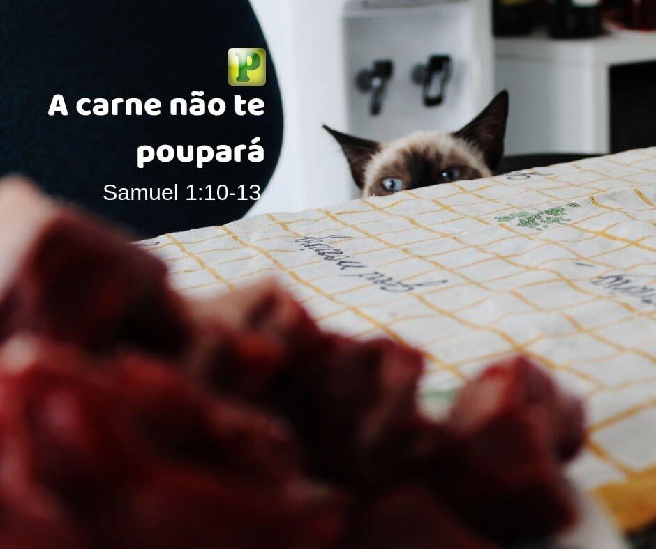 A carne não te poupará – Samuel 1:10-13