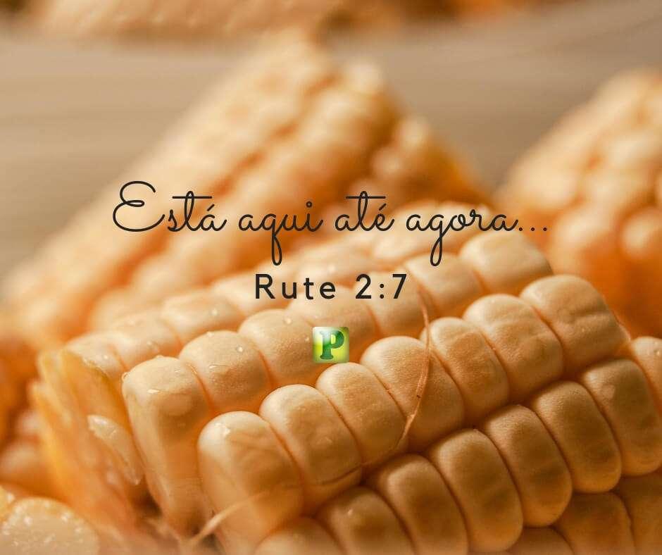 Rute 2:7 – Está aqui até agora…