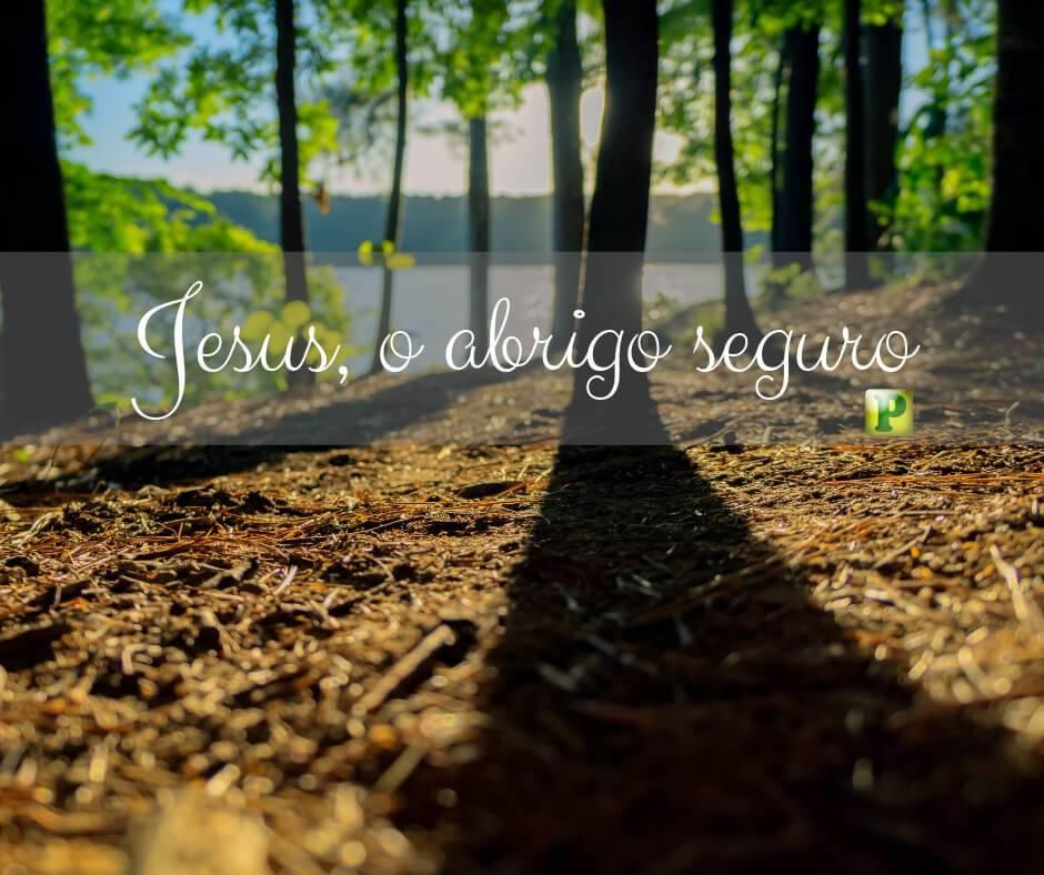 Salmo 91:1 – Jesus, o abrigo seguro