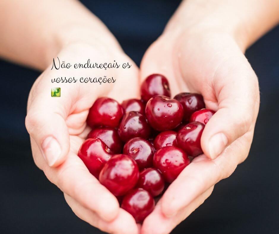 Não endureçais os vossos corações – Hebreus 4:7