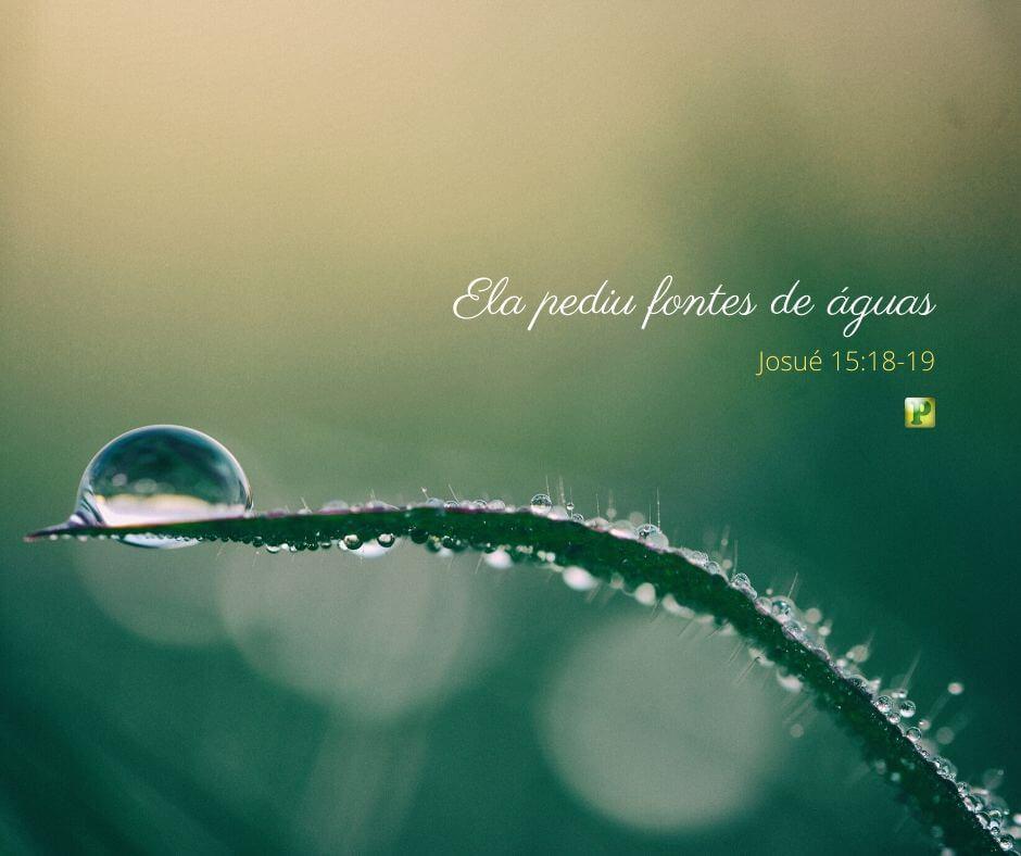 Ela pediu fontes de águas – Josué 15:18-19