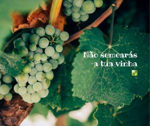 Não semearás a tua vinha – Deuteronômio 22:9