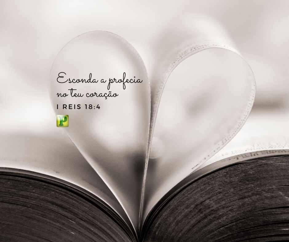 Esconda a profecia no teu coração – I Reis 18:4