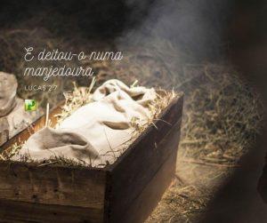E deitou-o numa manjedoura – Lucas 2:7