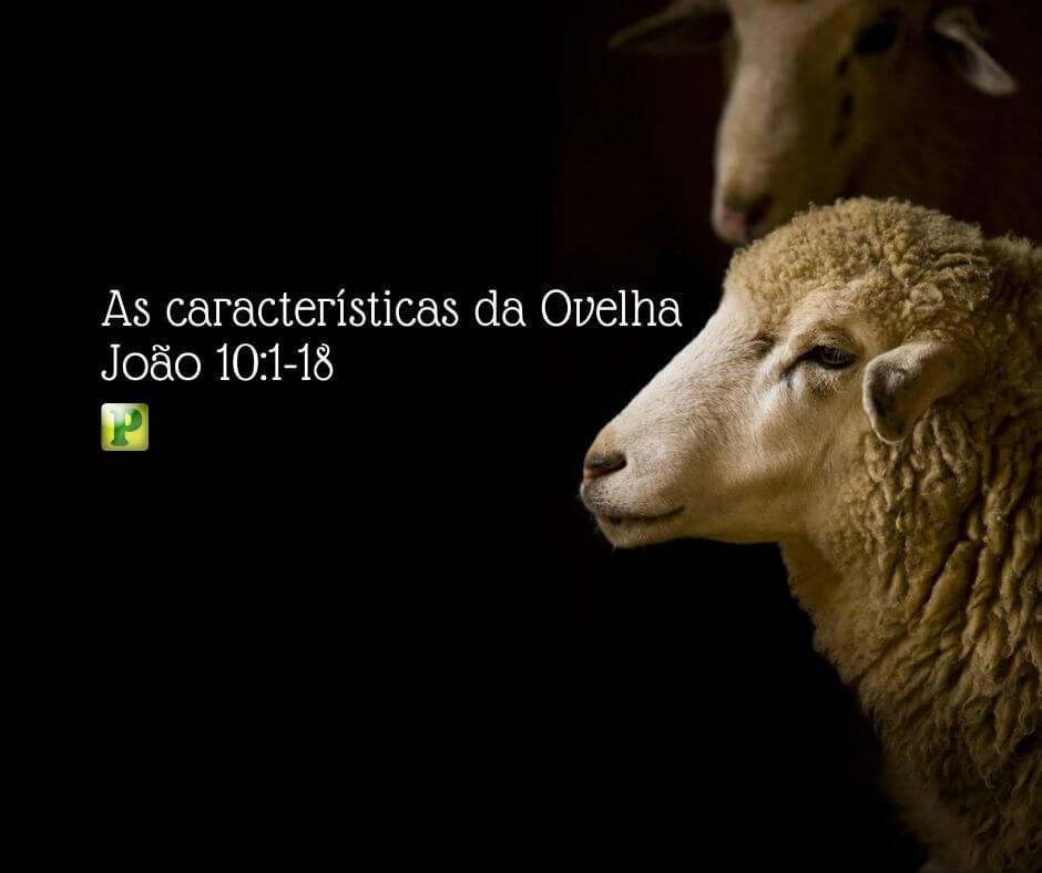 As características da Ovelha – João 10:1-18
