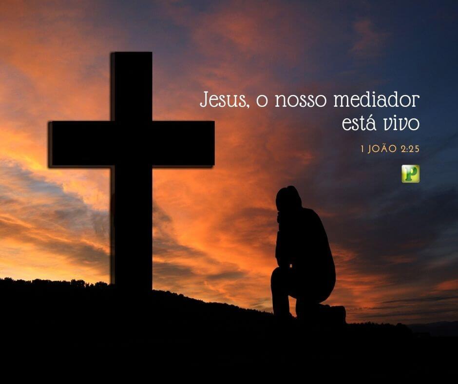 Jesus, o nosso mediador está vivo – 1 João 2:25