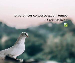 Espero ficar convosco algum tempo – I Coríntios 16:7-9